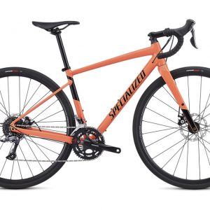 Specialized_Diverge_E5_WMN__52___2019_